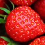 Hjemmelagde rørte jordbær (og andre bær)