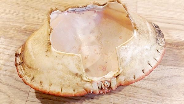 Tomt krabbeskjell