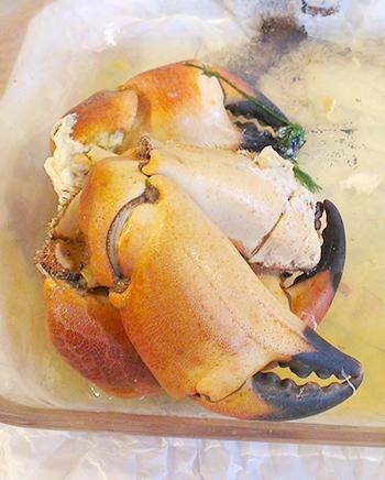 Krabbeklør