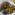 Hjortestek med spinat- og kantarellstuing
